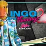 INGO ohne Flamingo live // King of Korn // JOY
