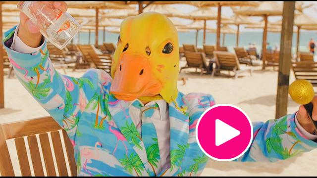 Ingo ohne Flamingo - Leichtigkeit