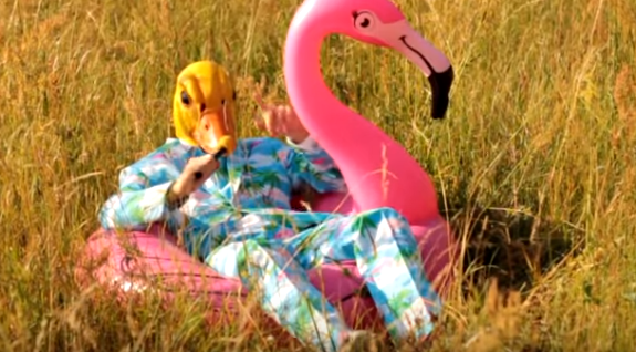 Ingo ohne Flamingo - Hartz 4 und der Tag gehört dir