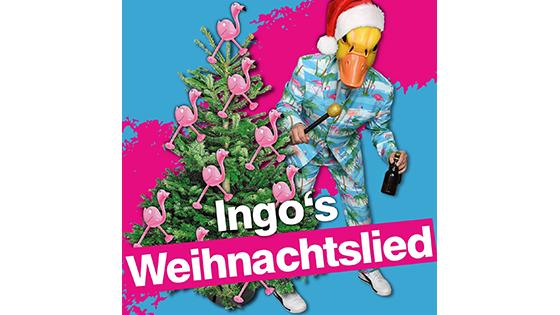Ingo ohne Flamingo singt sein Weihnachtslied vorm Weihnachtsbaum