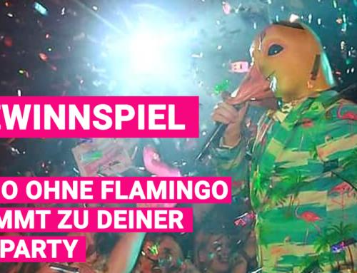Gewinnspiel: Ingo ohne Flamingo verlost einen Auftritt auf Deiner Abiparty 2021